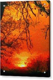 Fire In The Sky Acrylic Print by Jeffrey Kolker