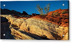Fire Lines Acrylic Print by Chad Dutson