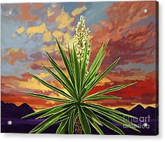 Fire Sky Desert Blooming Yucca Acrylic Print