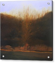 Acrylic Print featuring the painting Fire Tree by Cap Pannell