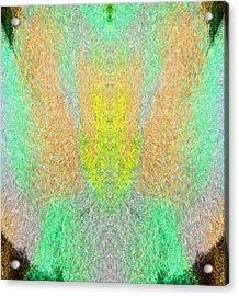 Firefly Acrylic Print by Christopher Gaston