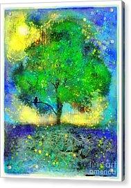 Firefly Summer Nights Acrylic Print