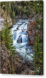 Acrylic Print featuring the photograph Firehole Falls by Sophie Doell