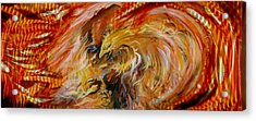 Firestorm Hawk Acrylic Print