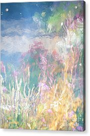 Fireweed Number 9  Acrylic Print by Brian Boyle