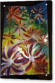 Firework Flower Acrylic Print by Eric Birmingham
