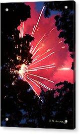 Fireworks Forest Acrylic Print