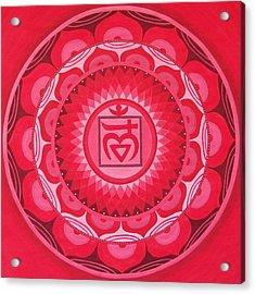 First Chakra Mandala Acrylic Print by Vlatka Kelc