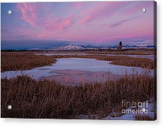 Acrylic Print featuring the photograph First Evening 2013 by Katie LaSalle-Lowery