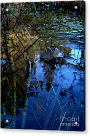 First Ice Acrylic Print by Steven Valkenberg