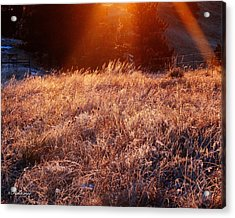 Acrylic Print featuring the photograph First Light by Fiskr Larsen