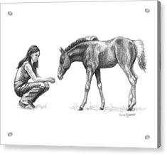 First Love Girl With Horse Foal Acrylic Print by Renee Forth-Fukumoto
