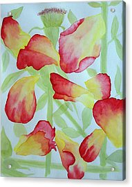 First Rose Acrylic Print