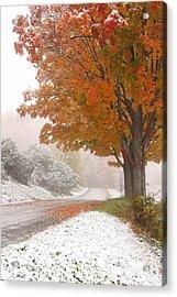 First Snow Acrylic Print by Butch Lombardi