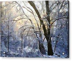 First Snow Acrylic Print by Gun Legler