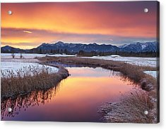 First Snow Acrylic Print by Michael Breitung