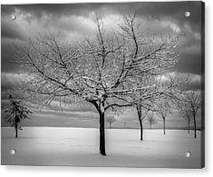 First Snow Acrylic Print by Randy Hall