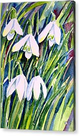 Acrylic Print featuring the painting First Snowdrops Of Winter  by Trudi Doyle