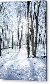 First Snowfall Acrylic Print by Diane Diederich