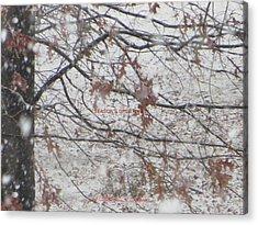 First Snowfall  Acrylic Print by Sonali Gangane