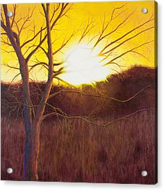 First Sunset Of Spring Acrylic Print by Garry McMichael