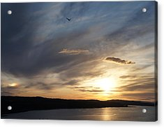 Firth Of Forth In The Sunset Acrylic Print