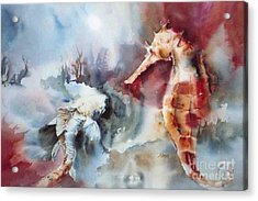 Fish And Sea Horse Acrylic Print by Donna Acheson-Juillet