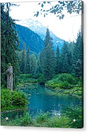 Fish Creek In Tongass National Forest By Hyder-ak  Acrylic Print by Ruth Hager