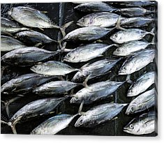 Fish For Sale In Open-air Market Acrylic Print by Panoramic Images