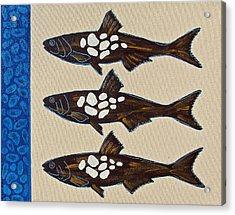 Fish Full Of Stones Acrylic Print