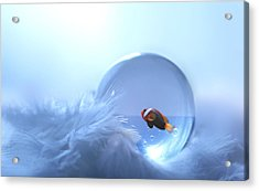 Fish In Glass Acrylic Print by Heike Hultsch