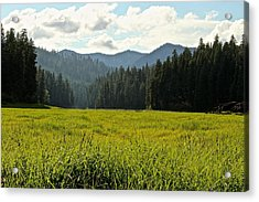 Fish Lake - Open Field Acrylic Print