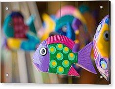 Fish Of Color Acrylic Print