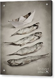 Fish Out Of Water Acrylic Print by Diana Kraleva
