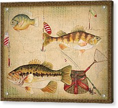 Fish Trio-a-basket Weave Border Acrylic Print by Jean Plout