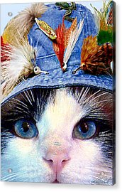 Fisher Cat Acrylic Print by Michele Avanti