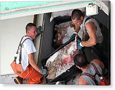 Fishermen Unloading Their Catch Acrylic Print by Jim West