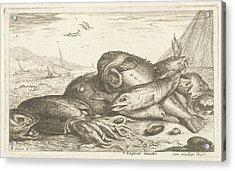 Fishes And A Squid, Albert Flamen, Jacques Lagniet Acrylic Print