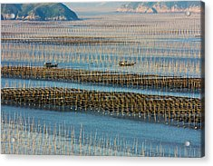 Fishing Boat Sailing Through Bamboo Acrylic Print