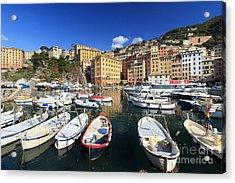 Acrylic Print featuring the photograph fishing boats in Camogli by Antonio Scarpi