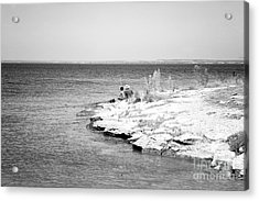 Acrylic Print featuring the photograph Fishing by Erika Weber