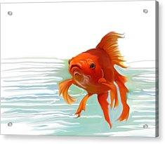 Fishy Fishy Fish Acrylic Print by Christian Kolle