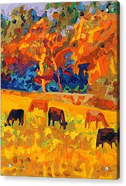 Five Texas Cows At Sunset Oil Painting By Bertram Poole Acrylic Print by Thomas Bertram POOLE