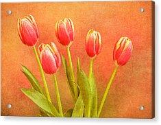 Five Tulips Acrylic Print