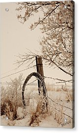 Acrylic Print featuring the photograph Fixing Fence by Shirley Heier
