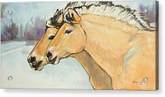 Fjord Race Acrylic Print by Tracie Thompson