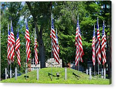 Flag - Illinois Veterans Home - Luther Fine Art Acrylic Print by Luther Fine Art
