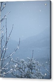 Acrylic Print featuring the photograph Flakes by Brian Boyle