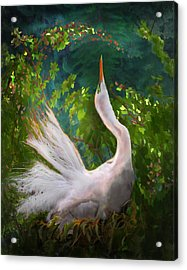 Flamboyant Egret Acrylic Print by Melinda Hughes-Berland