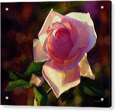 Flamboyant Acrylic Print by RC deWinter